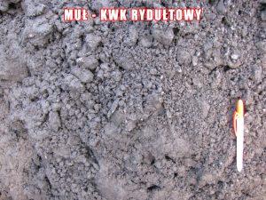 Muł - KWK Rydułtowy